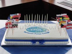 Корпоративный торт # 4