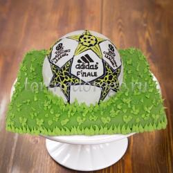 Прикольные торты на день рождения # Футбольный мяч