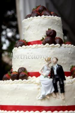 Прикольные торты на свадьбу # 31