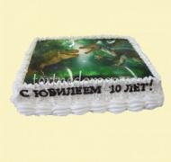 Фото торты # 27