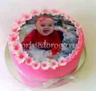 Фото торты # 20