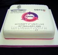 Корпоративный торт # 24