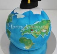 Прикольные торты на день рождения # Земной шар